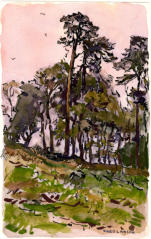 Coppice. Watercolour C. 1948